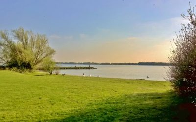 Local attraction Grafham Water now open