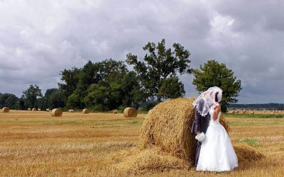 Future Wedding Accommodation Planning